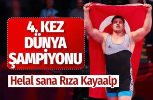 Rıza Kayaalp dünya şampiyonu oldu! İşte 4. kez şampiyon olduğu maçın görüntüsü