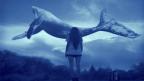 TBMM Araştırma Komisyonu: 150 civarında gencin intiharında Mavi Balina şüphesi var