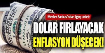 Merkez Bankası'nın anketinde flaş dolar beklentisi